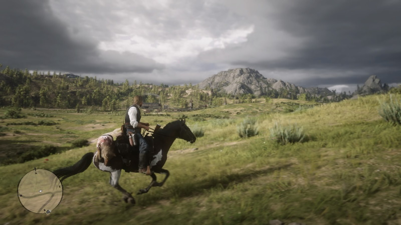 Red Dead Redemption 2_20181031014331